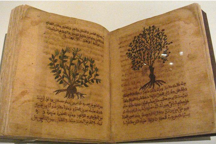 Tiga Ahli Botani di Zaman Keemasan Islam