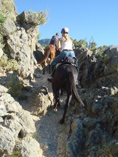 Horsexplore, Riitta reissaa, Albania, Caravan Trails