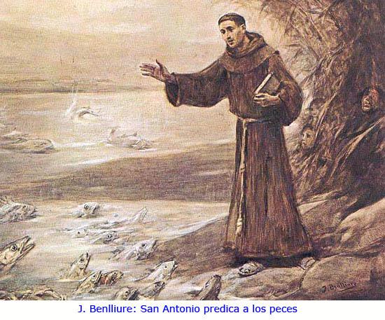 Colonoscopia San Antonio De Padua