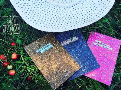 kağıt salıncak, pulbiber mahallesi, grapon kağıtları, ahlar ağacı, şiir, blog