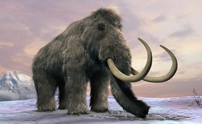 Fosil Mammoth Ditemukan di Bawah Jalanan Meksiko