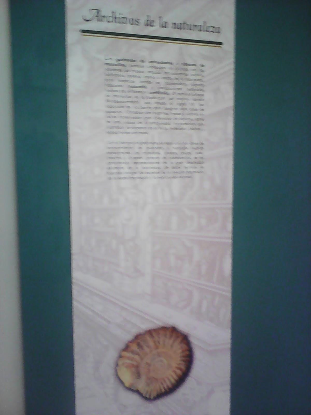 Museo de Historia Natural Dr. Manuel M. Villada