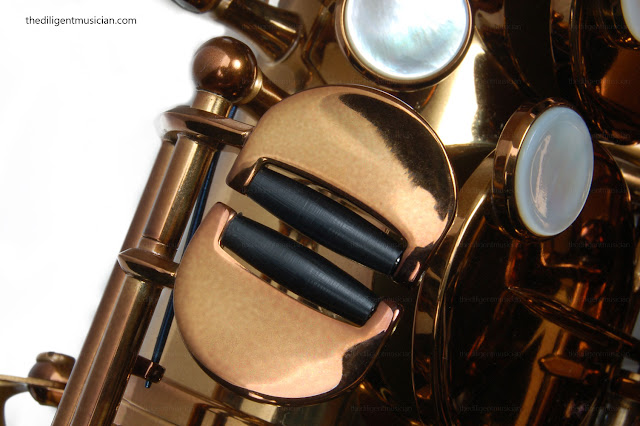 Viking Valkyrie Alto Saxophone Review roller