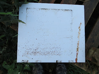 varroa mites, the bee destroyer, oxalic acid, mite eradicator