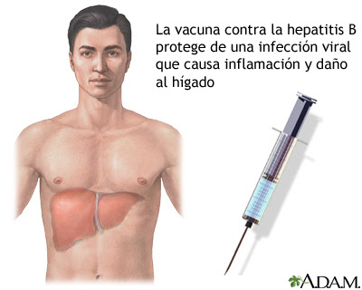 Virus y hepatitis