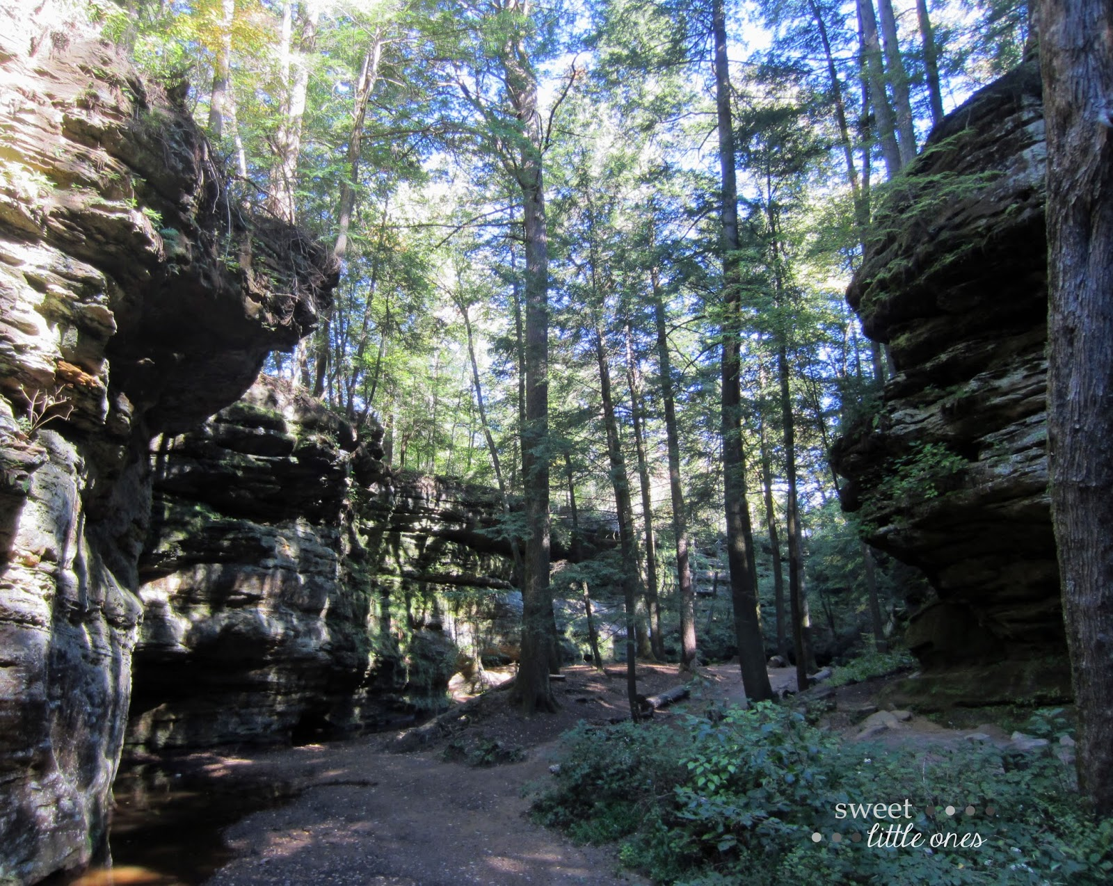 Hocking Hills Ohio - Old Man's Cave trail   www.sweetlittleonesblog.com