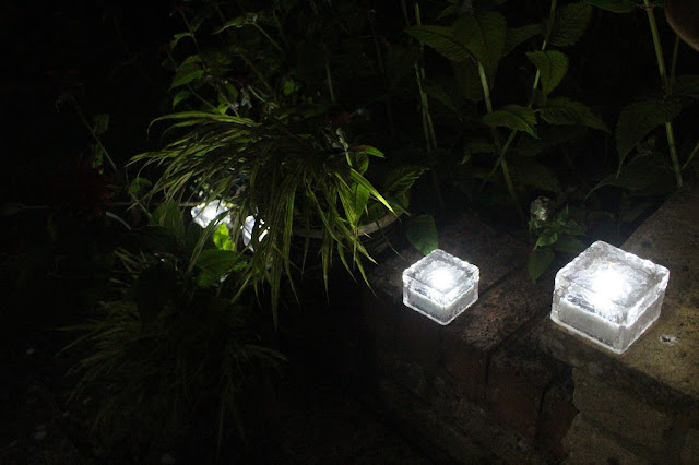 Glass brick solar lights lighting the steps from my patio