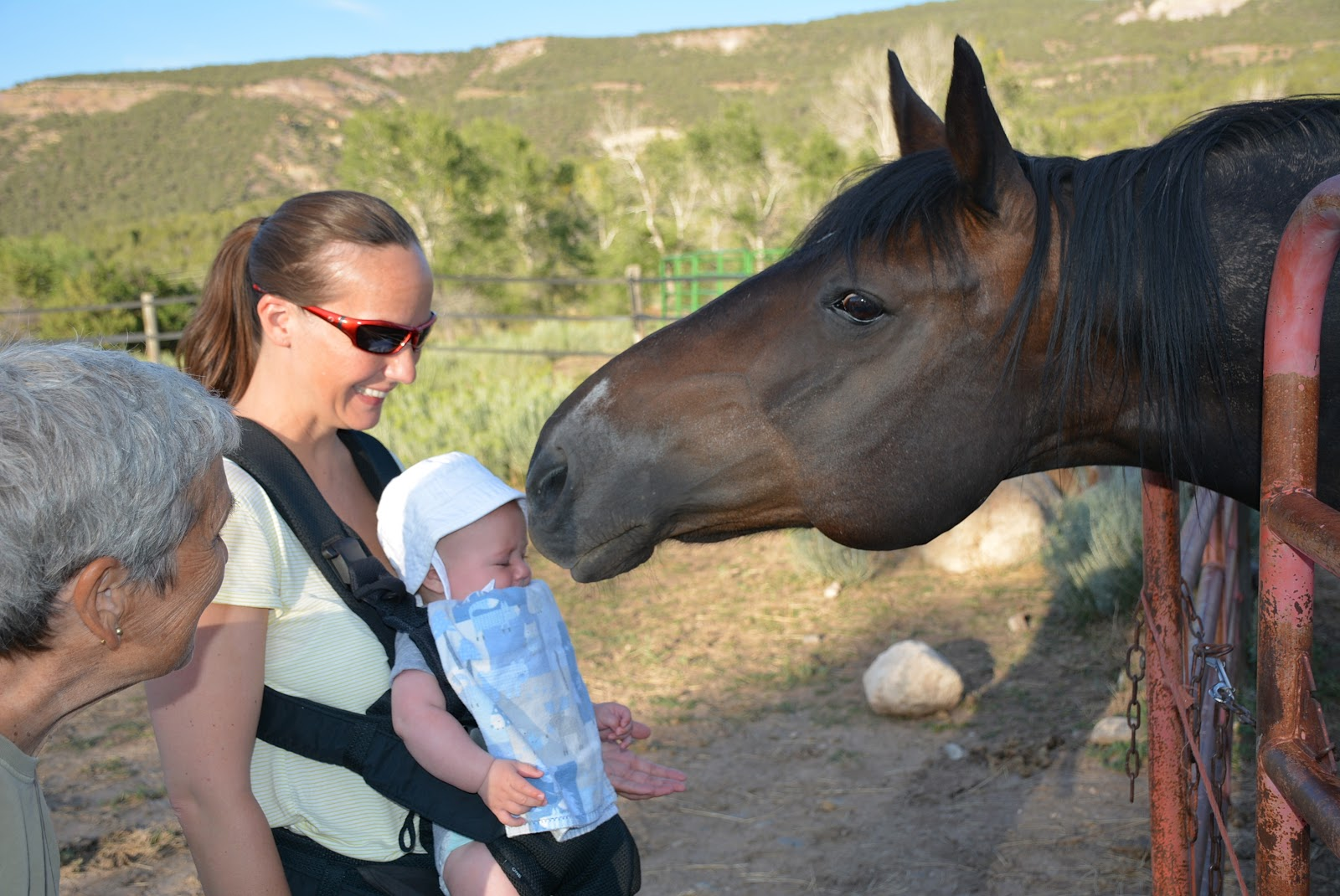 Horse visits with Finley