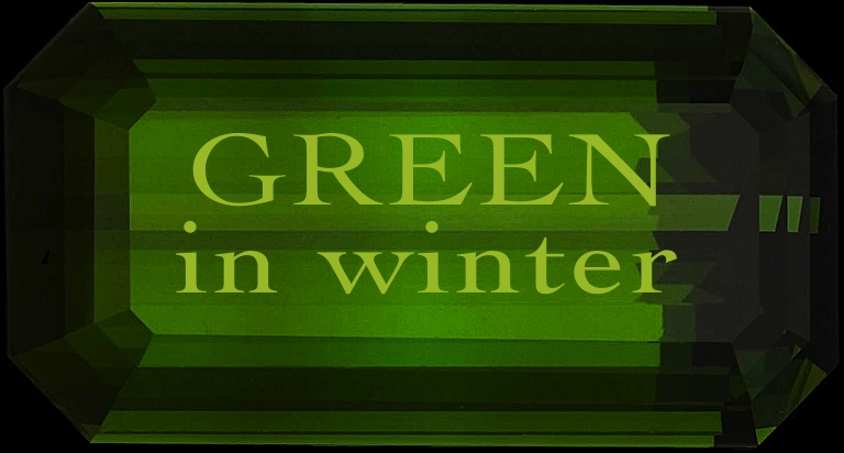 Green in Winter title image