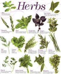 The Gay Mage: Herbs and Magickal Correspondences