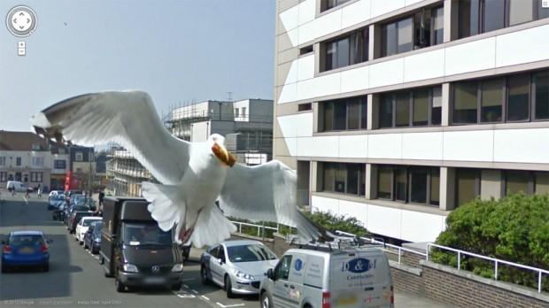 Google Street View Photos-11