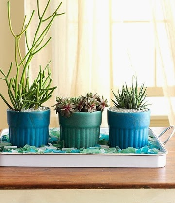 tray with seaglass and planters