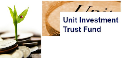 Unit Investment Trust