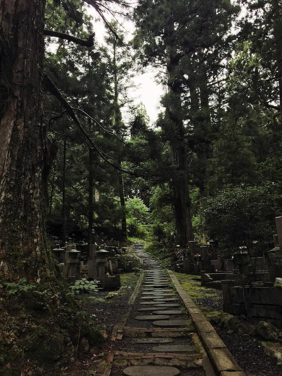 A path in the forest of Okunoin Cemetery Koyasan Japan