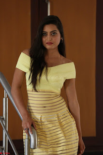 Shipra gaur in V Neck short Yellow Dress ~  052.JPG