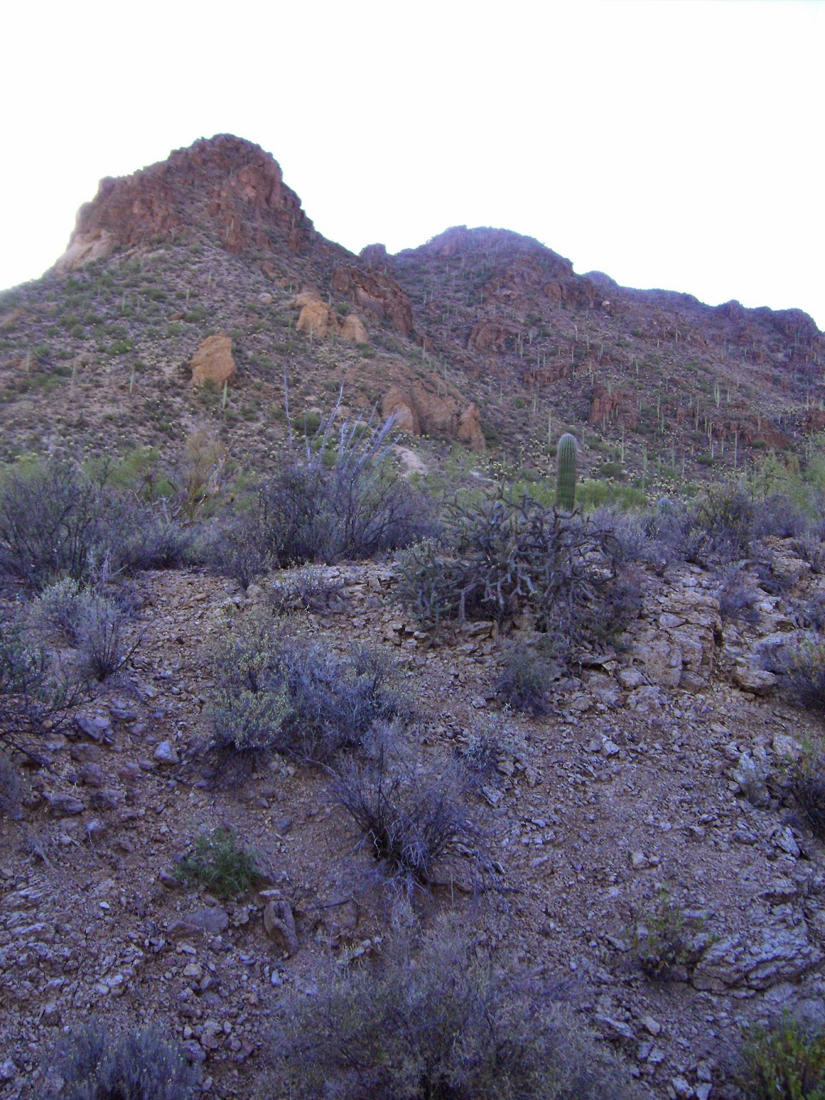 hiking up a steep trail in tucson mountain park