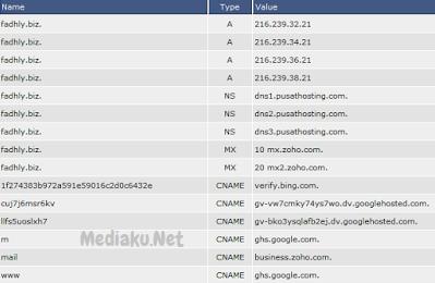 Mengatur DNS Di DirectAdmin