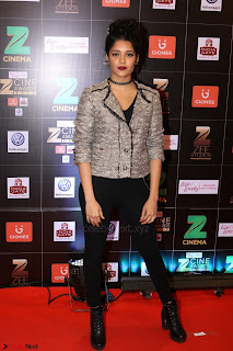 Bollywood Celebrities on the Red Carpet Of Zee Cine Awards 2017 Exclusive 084.JPG