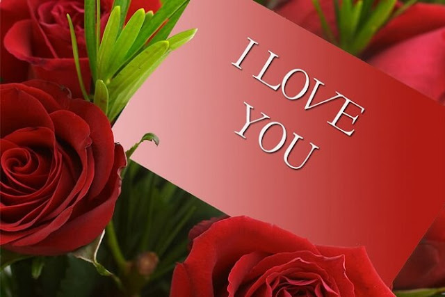 i love u valentines day 2017 quotes
