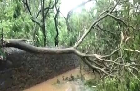 Heavy Rains, Strong Winds Lash Kanyakumari