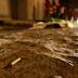 Ceará é o estado com a maior redução no número de homicídios do país
