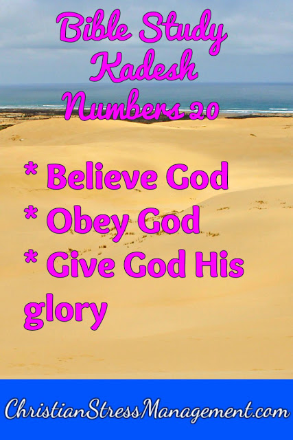 Bible Study Lessons from Kadesh