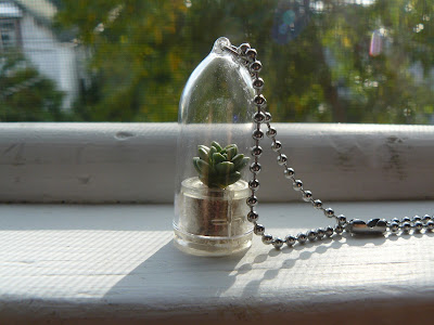 succulent terrarium necklace