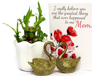 Buy home decor gifts for mother's day