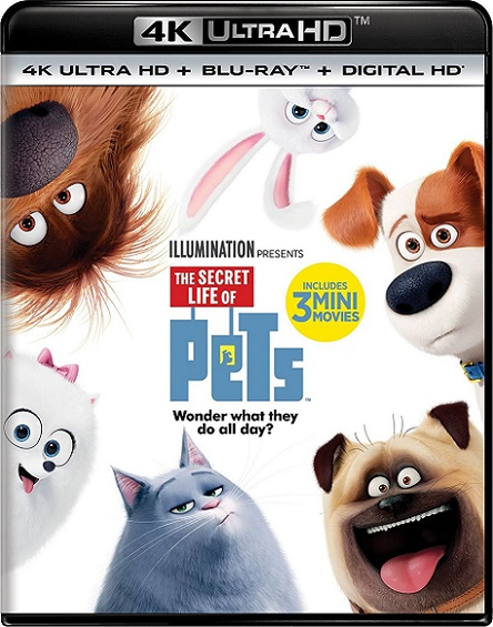 The Secret Life of Pets 4K (La Vida Secreta de tus Mascotas) (2016) 2160p 4K UltraHD HDR BDRip 8.7GB mkv Dual Audio DTS-HD 7.1 ch