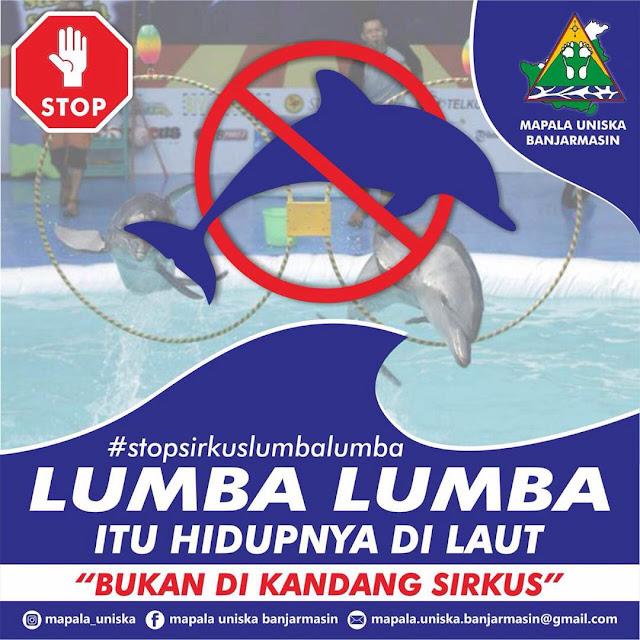 lumba-lumba bukan hewan sirkus