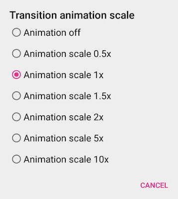 Set Transition Animation Scale