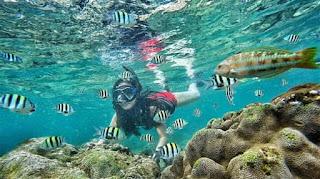 snorkling di pantai nglambor, snorkling, paket wisata jogja, tour murah jogja,