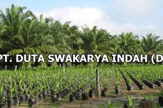 Lowongan PT. Duta Swakarya Indah (DSI) Pekanbaru Februari 2019