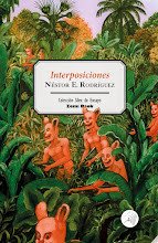 interposiciones