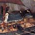 BBC-H «ΟΔΥΣΣΕΙΑ» του ΟΜΗΡΟΥ ανακηρύχθηκε ΠΑΓΚΟΣΜΙΩΣ ως «η κορυφαία ιστορία που διαμόρφωσε τον κόσμο»!![ΒΙΝΤΕΟ]