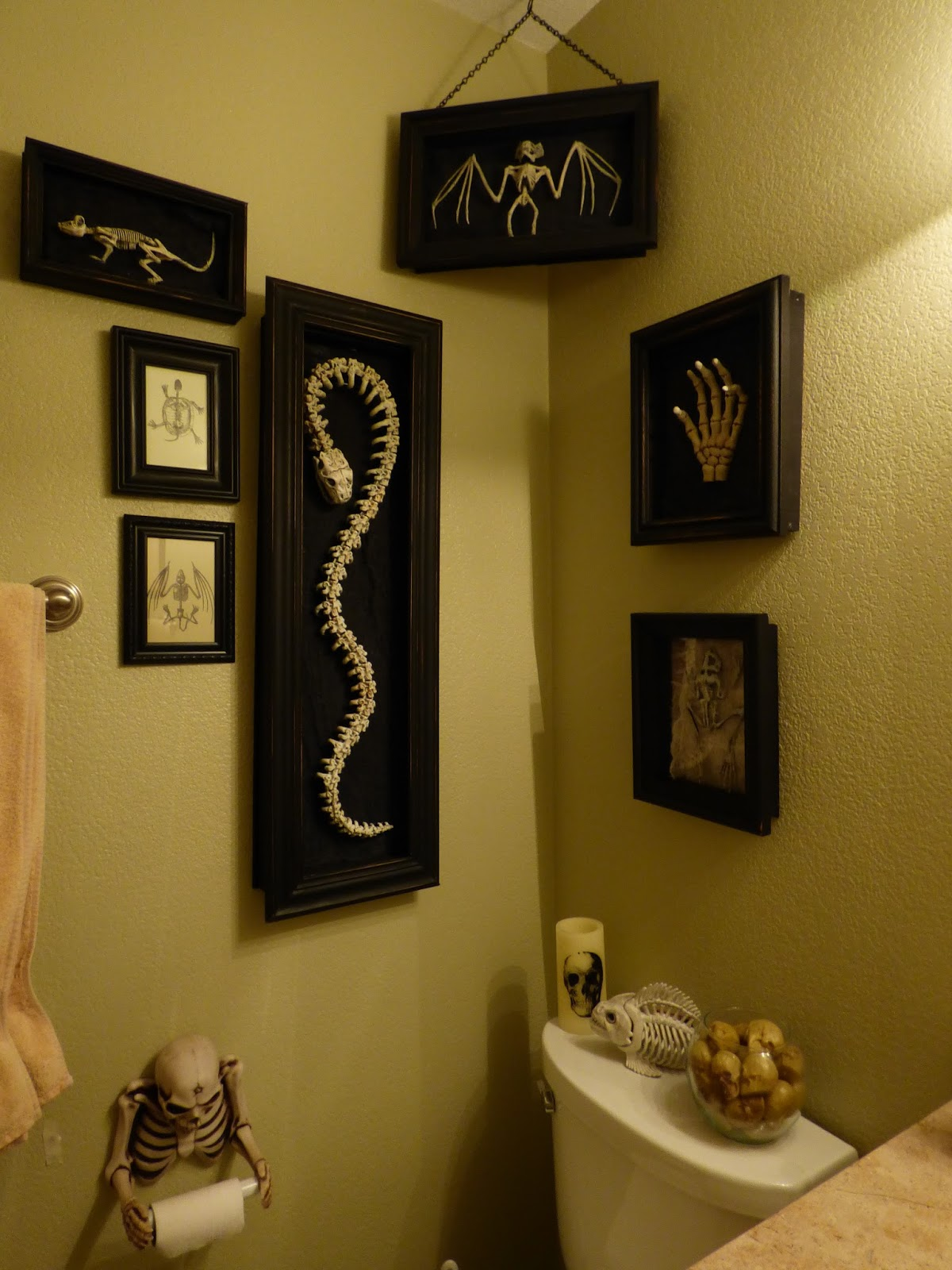 Ideal So I finally finished building shadow boxes for bony bathroom