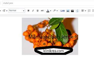 Cara Mengetahui Url Logo Blog