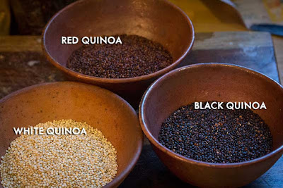 White Quinoa, Red Quinoa, and Black Quinoa