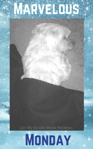 #MarvelousMonday, Lexi The Maltese, On My Kindle Book Reviews, TBR, currently reading