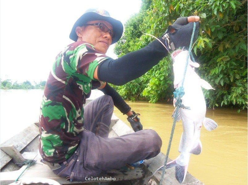 umpan mancing ikan patin besar di sungai