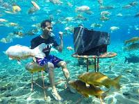 Wisata Bawah Air Umbul Ponggok, Bunaken van Klaten yang Mendunia