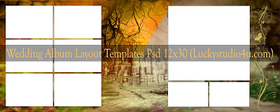 Wedding Album Layout Templates 12x30 Psd