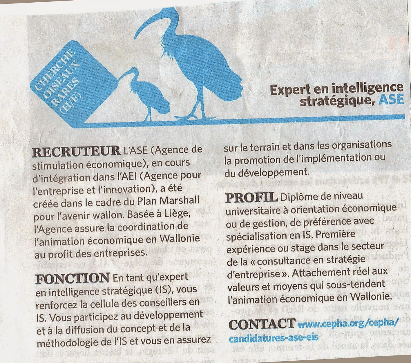 Recrutement en intelligence strategique