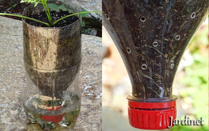 Top Jardinet: Vaso autoirrigável de garrafa pet AE56