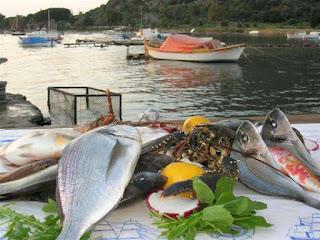 Balıkçı Kemal'in Yeri