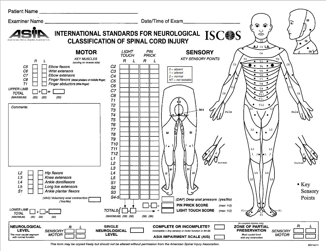Liga Paraibana de Neurointensivismo: Avaliação neurológica