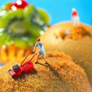 Món ăn ngon: Tác phẩm nghệ thuật từ món ăn