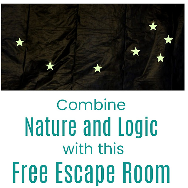Nature Themed Escape Room Plans