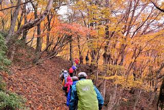 Hiking in Japan | Mt. Bunagatake in Shiga | Fall Foliage In Japan