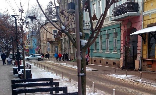 Cold November Day in the Street of Ternopil